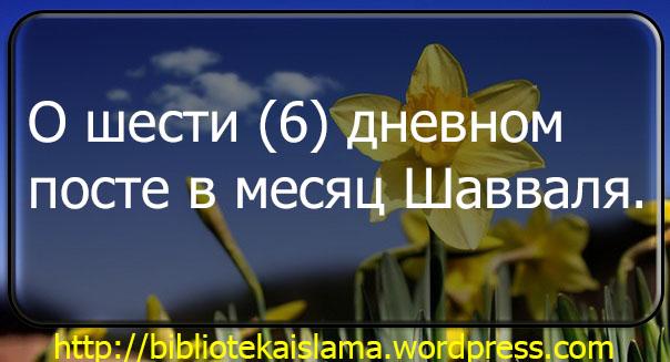 О шести (6) дневном посте в месяц Шавваля.